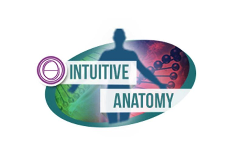 Intuitive Anatomy seminar